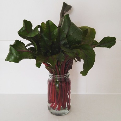 Beetroot-Leaves-in-a-Jam-Jar-550x550