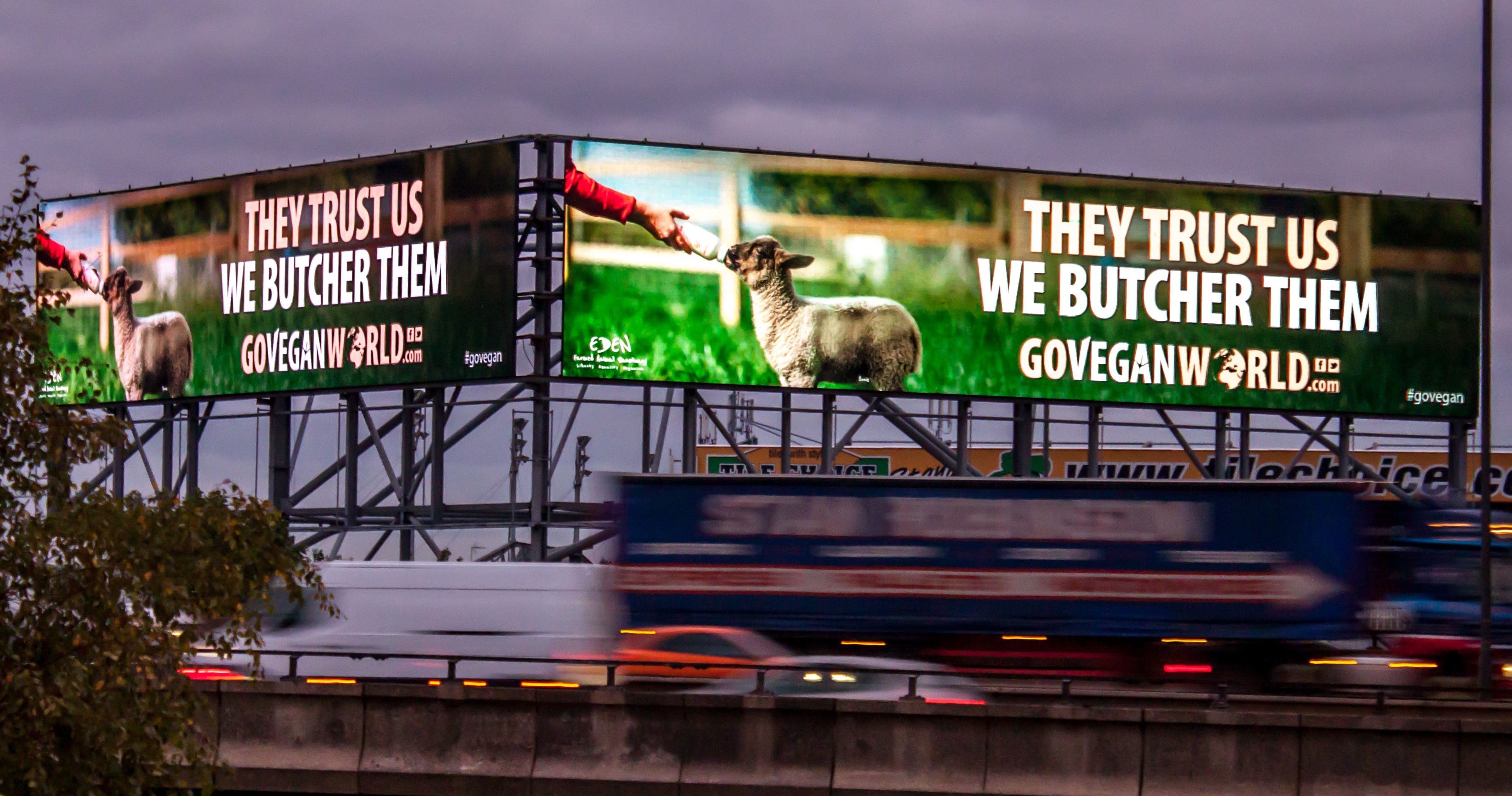 Go-Vegan-World-Billboard-Campaign-Birmingham-12 (1)