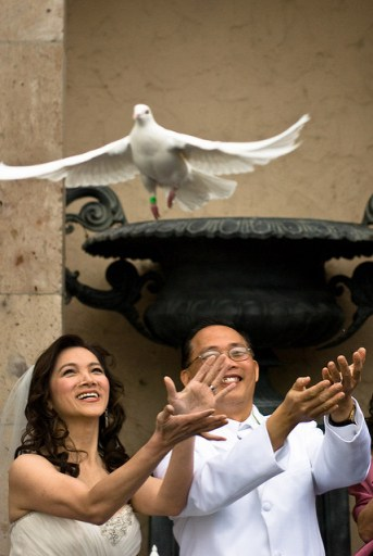 why you shouldn u0026 39 t release doves at your wedding