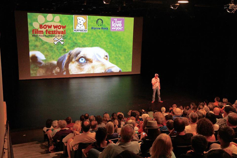 A Peek Into the Amazing Film Festival Raising Awareness for Dogs