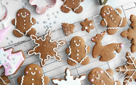 Vegan Holiday Gingerbread Cookies with Royal Icing