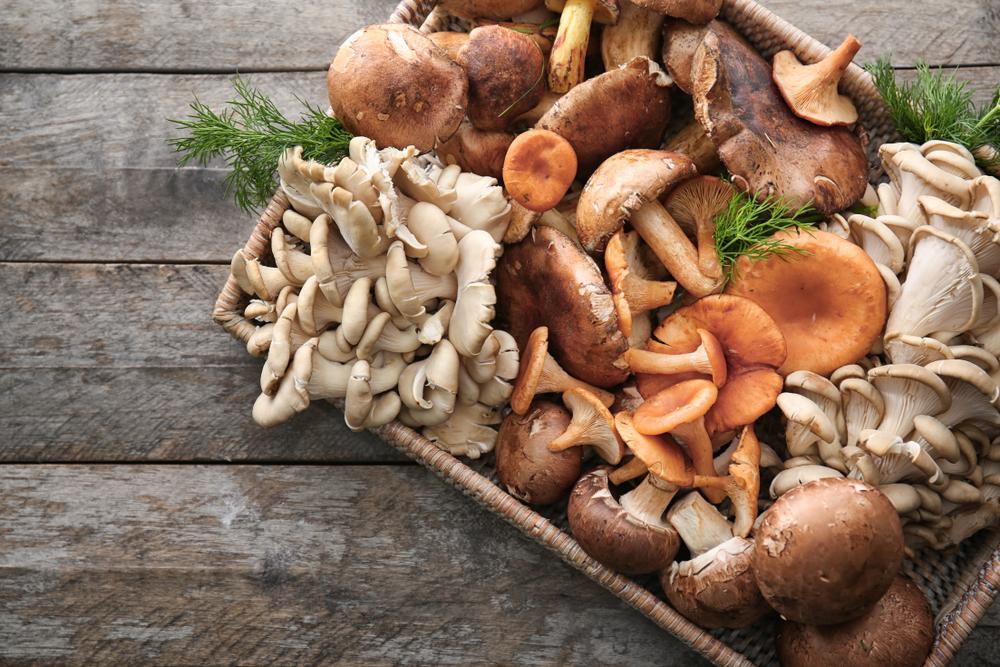 raw mushrooms vegan diet