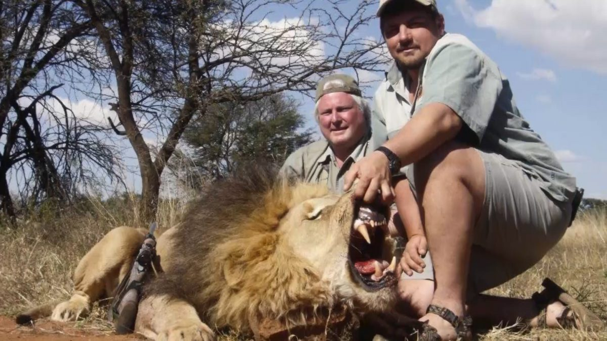 10 Stories Highlighting the Horrors of the Trophy Hunting Industry
