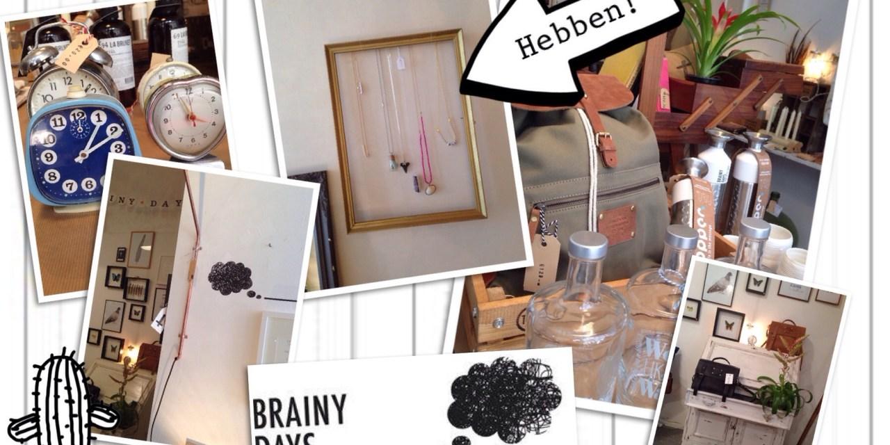 Hotshop: conceptstore  *Brainy Days*