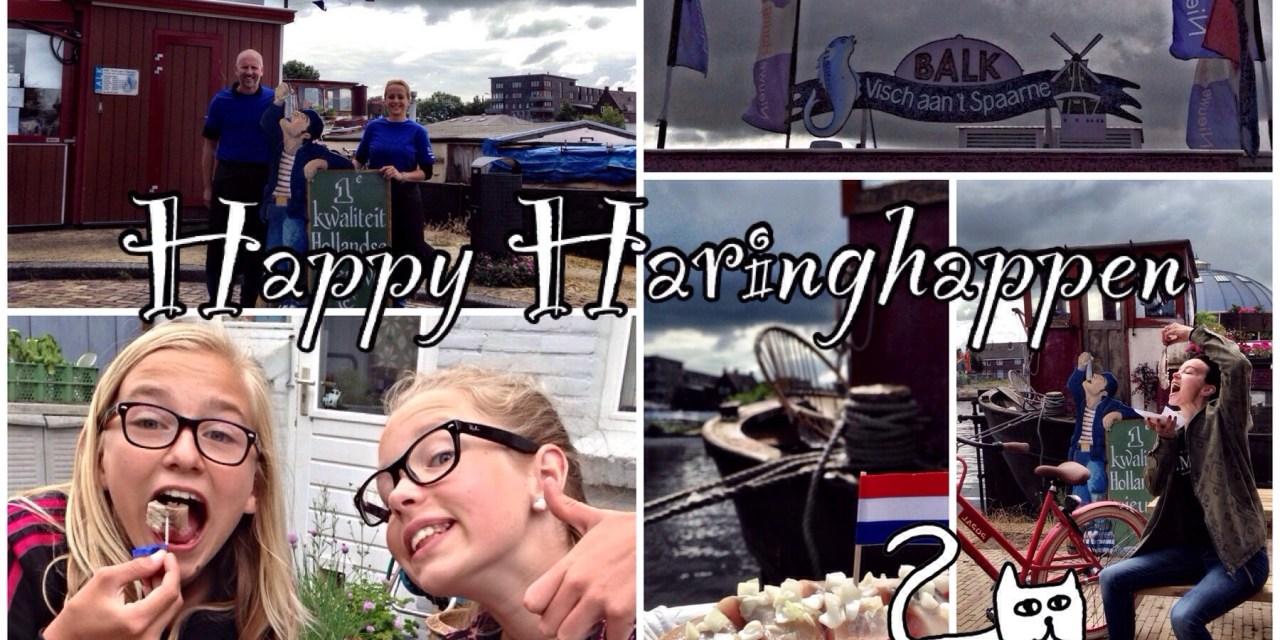 Hotspot Haarlem: Balk Visch aan 't Spaarne