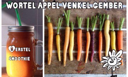 Oranje herstel smoothie met wortel