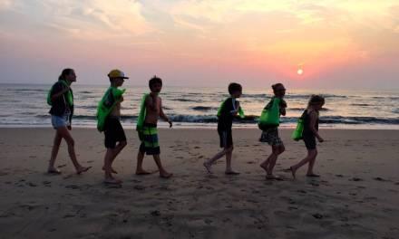 Puin ruimen bij de strandhuisjes