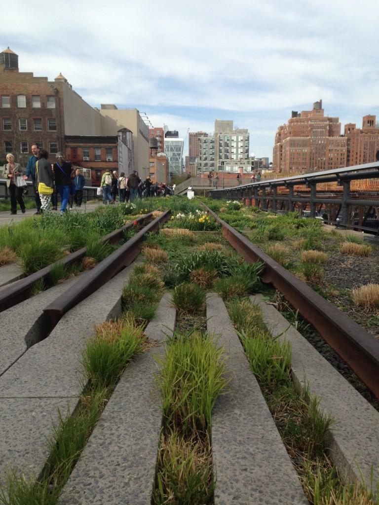 High Line - OHIMP