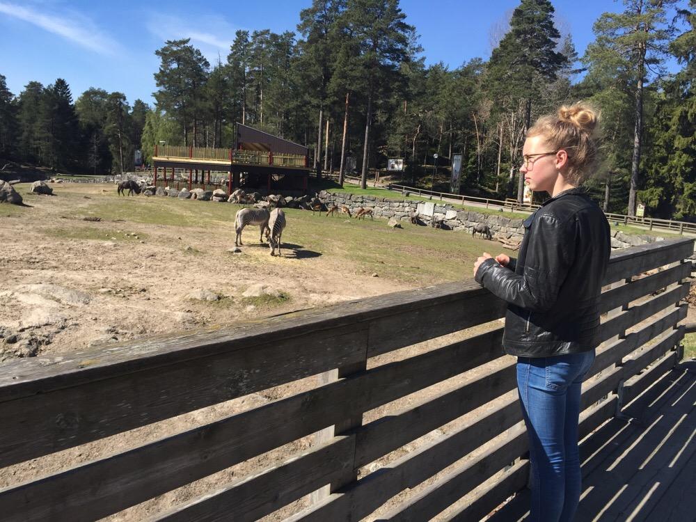 dierentuinen in Zweden