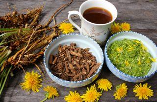 paardenbloemen koffie