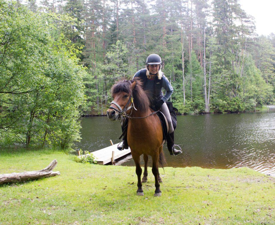 paardrijden zweden
