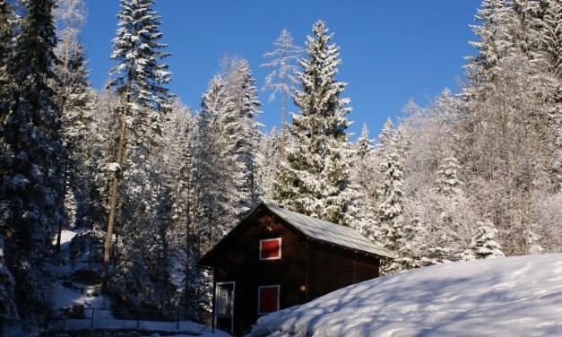 Fotograferen in de sneeuw? Zo doe je dat!