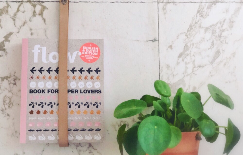 DIY: tijdschrifthouder van een leren riem