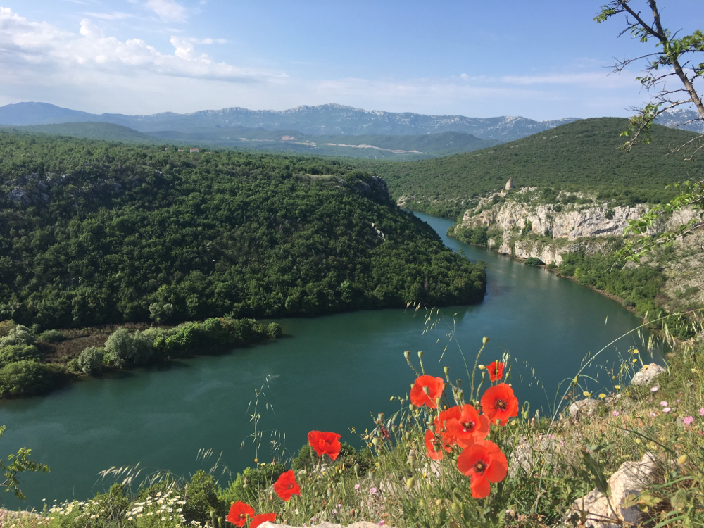 Tips for Dalmatie in Kroatie