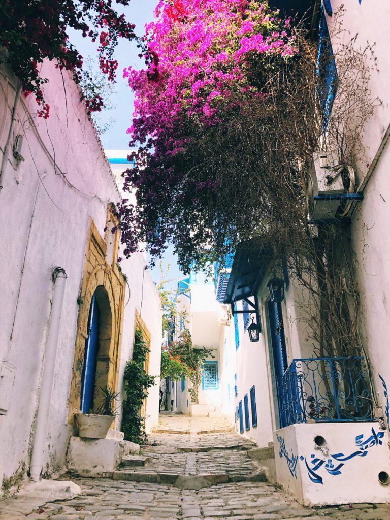 streets of Sidi Bou Said