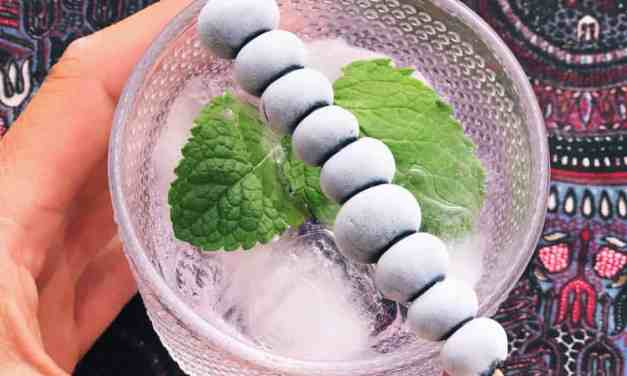 gin tonic met munt en bosbessen