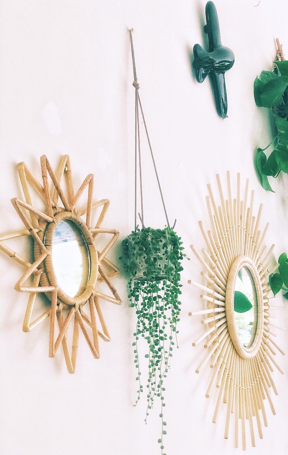 15x erwtenplant inspiratie + verzorgingstips