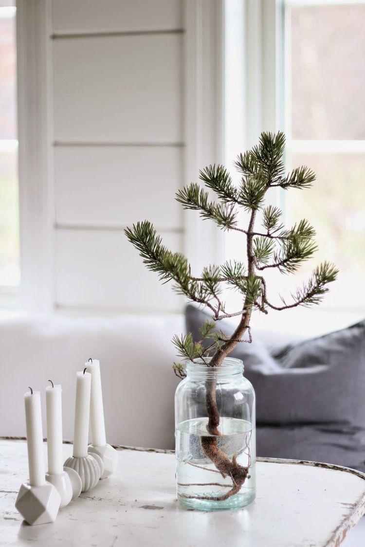 kerstboom in een vaas