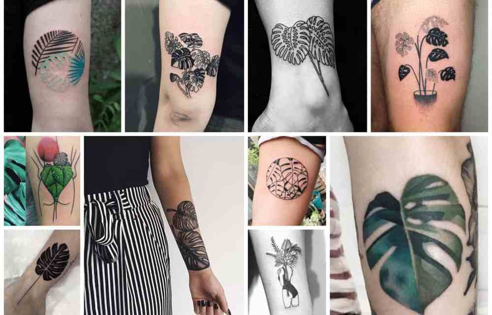33x inspiratie voor een Monstera tattoo