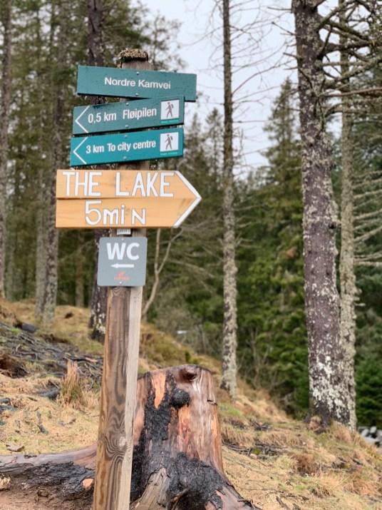 Hike mount Floyen