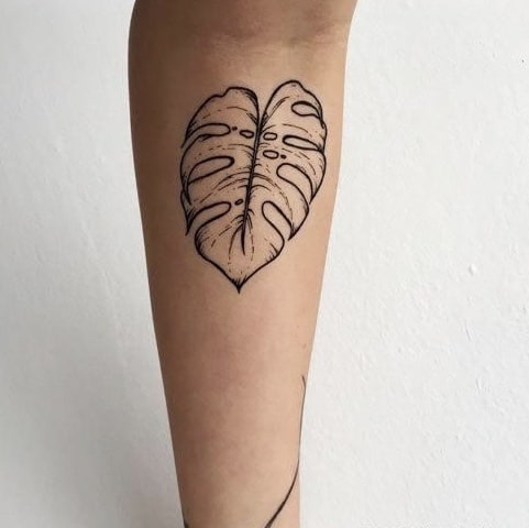 Leaf tattoo monstera plant