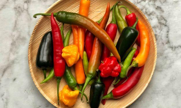 Slowcookerrecept: sambal