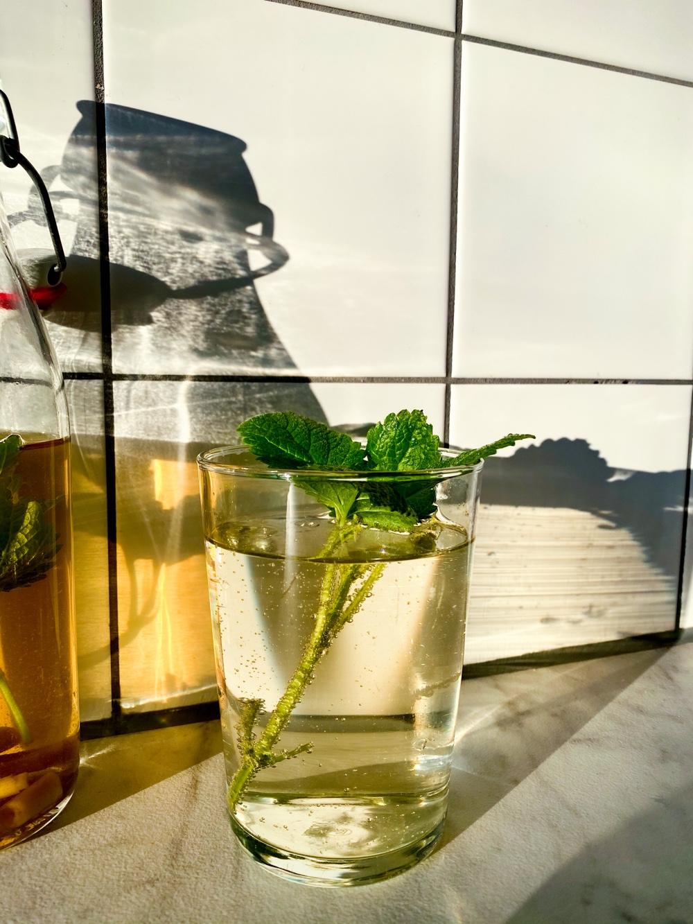 citroengras limonade