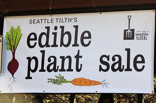 Seattle Tilth Edible Plant Sale