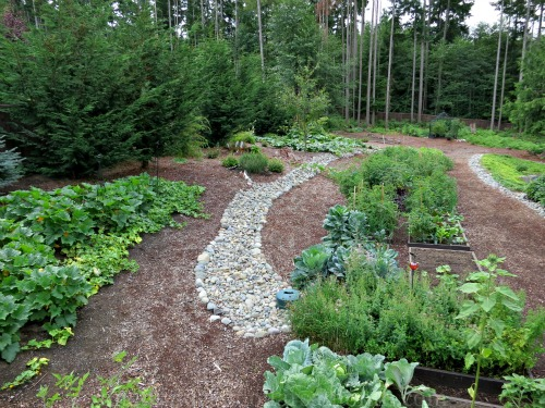 mavis garden blog raised vegetable beds