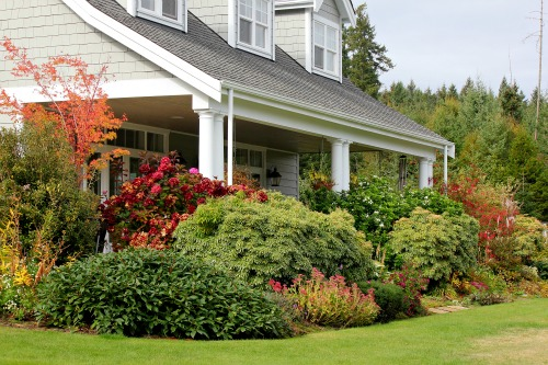 cottage garden flowers back porch