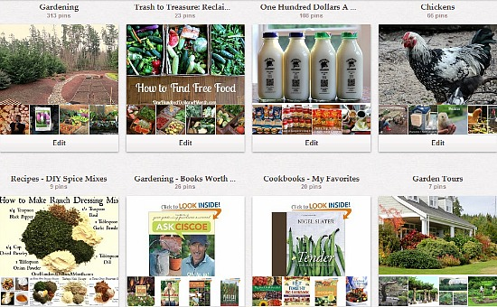 one hundred dollars a month pinterest