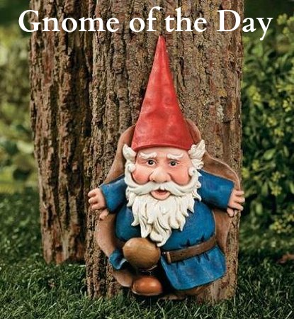 gnome of the day