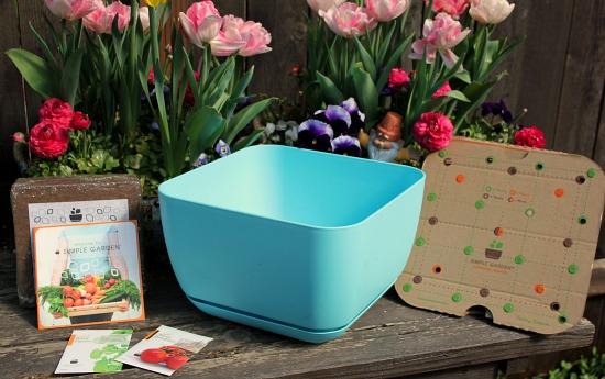 simple garden container garden kits