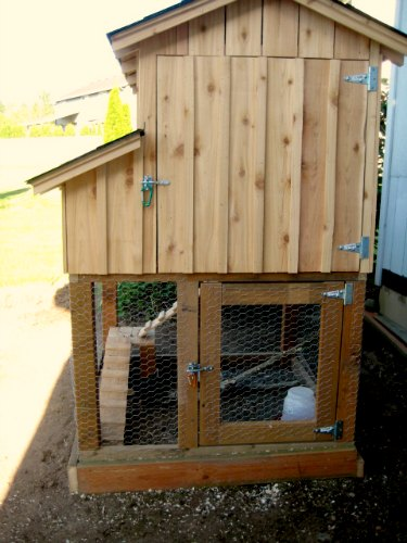 DIY chicken coop plans with pictures