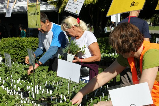 Seattle tilth plant sale