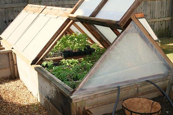 Gardening In Oklahoma Raised Garden Beds A Potato