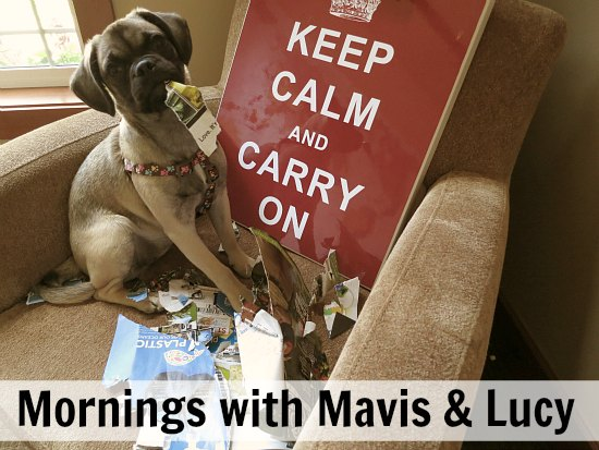mornings with mavis and lucy