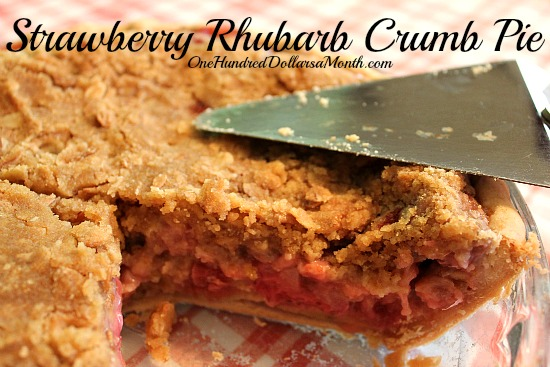 Strawberry Rhubarb Crumb Pie