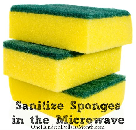 how to clean a sponge in microwave