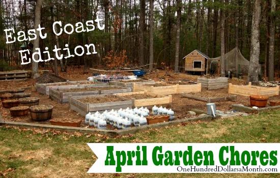 garden chores east coast april