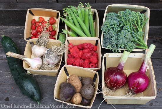 fresh homegrown fruits and vegetables