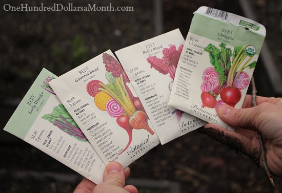 botanical-interests-seed-packets-beets