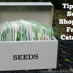 Tips for Seed Shopping From Catalogs