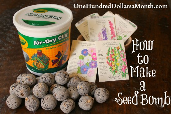 How-to-make-a-seed-bomb