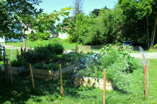 canada garden blog