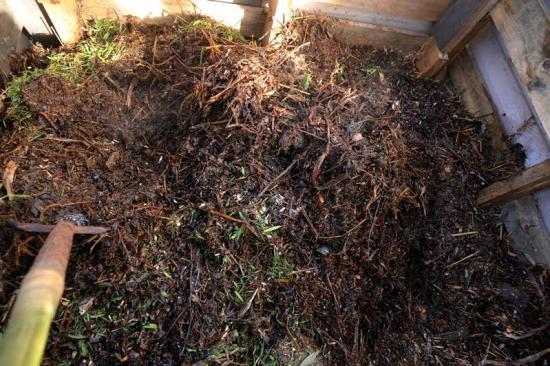 composting14