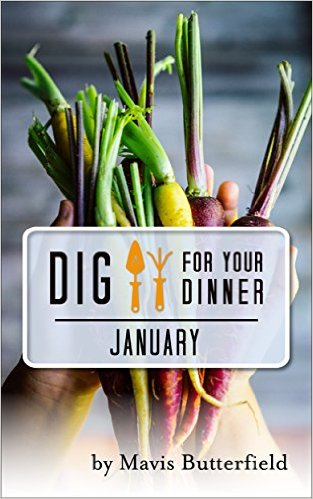 january ebook