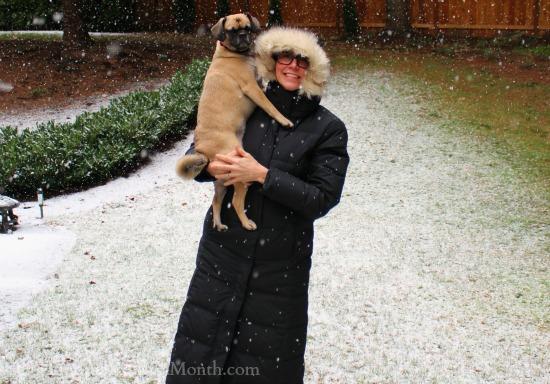 mavis and lucy puggle dog