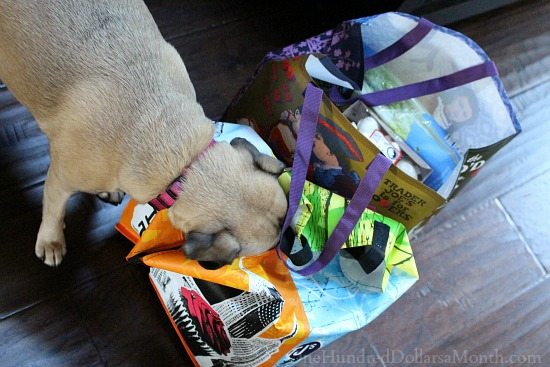 lucy the puggle dog grocery bags