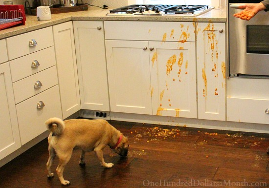 lucy kitchen spills spilled soup